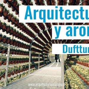 arquitectura-y-aroma
